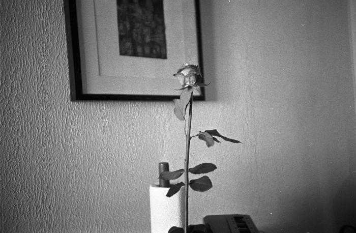 Ruusu-1
